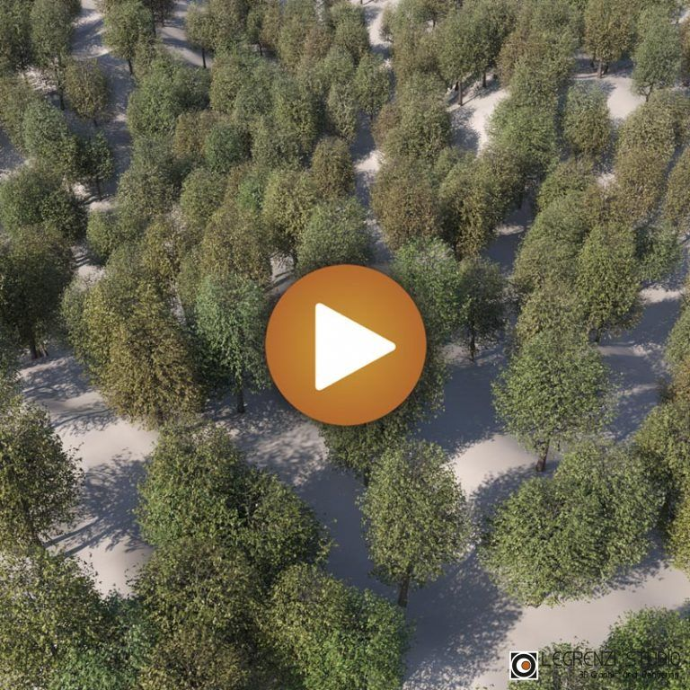 Ch08_Video_002_Slider_ProxyForest
