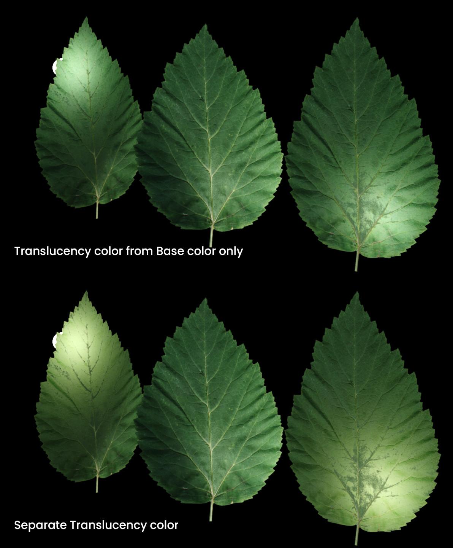 CoronaPhysicalMtl anteprima - Translucency Color